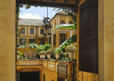 Patio trasero Casa Duque Bejar