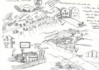 Análisis del entorno Maya